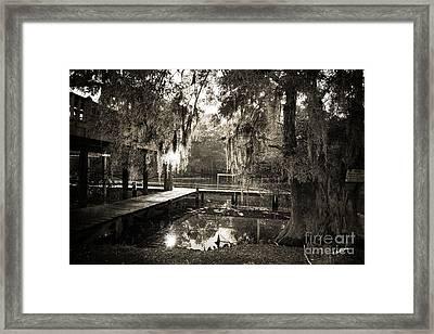 Bayou Evening Framed Print by Scott Pellegrin