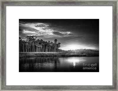 Bayou Sunset-b/w Framed Print by Marvin Spates