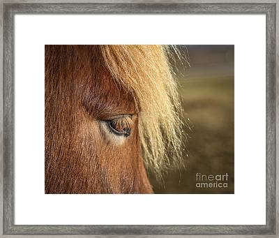 Be A Light To Yourself Framed Print by Evelina Kremsdorf