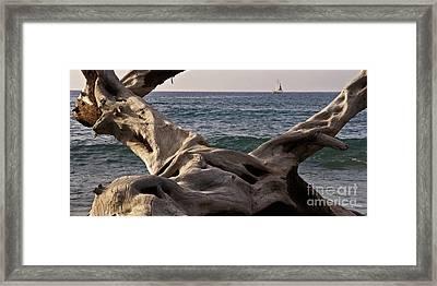 Beach Art Framed Print by Inge Riis McDonald