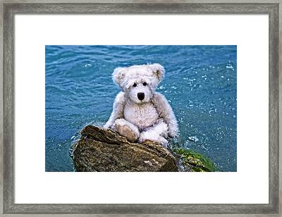 Beach Bum - Teddy Bear Art By William Patrick And Sharon Cummings Framed Print by Sharon Cummings