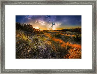 Beach Dunes Framed Print by Debra and Dave Vanderlaan