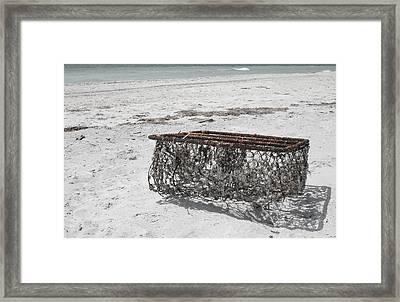 Beach Finds Framed Print by Georgia Fowler