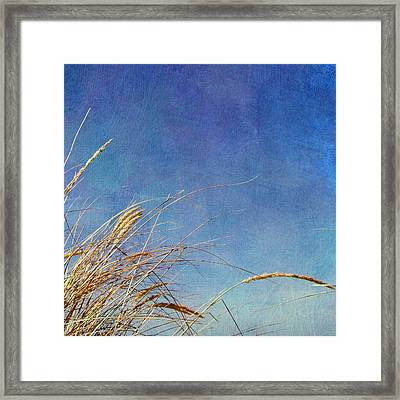 Beach Grass In The Wind Framed Print by Michelle Calkins