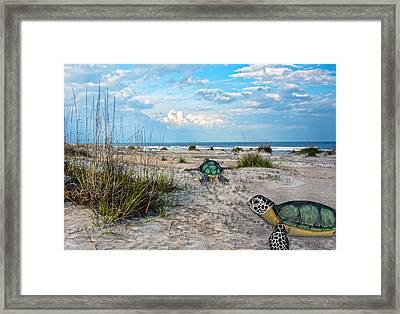 Beach Pals Framed Print by Betsy C Knapp