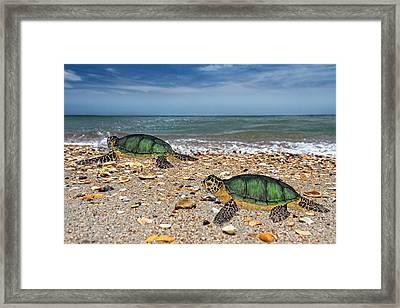 Beach Pals II Framed Print by Betsy Knapp