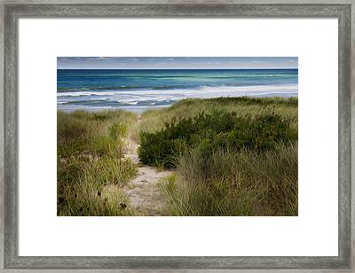 Beach Path Framed Print by Bill Wakeley