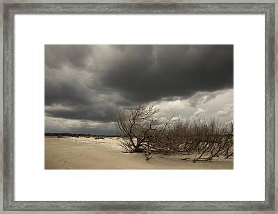 Beach Storm Framed Print by Barbara Kraus - Northrup