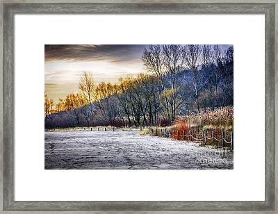 Beach Sunset At Scarborough Bluffs Framed Print by Elena Elisseeva