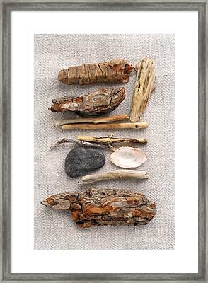 Beach Treasures Framed Print by Elena Elisseeva