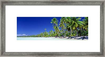 Beach With Palm Trees, Bora Bora, Tahiti Framed Print by Panoramic Images