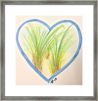 Beachgrass Mv Framed Print by Barbara Bellissimo