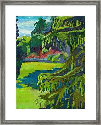 Beacon Hill Park Framed Print by Janet Ashworth