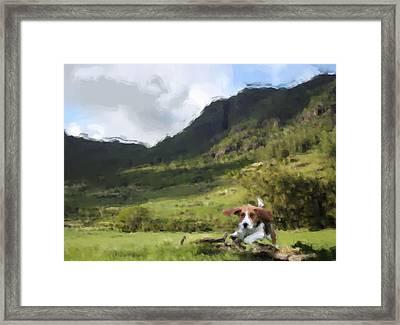 Beagle Love Framed Print by Gabriel Mackievicz Telles