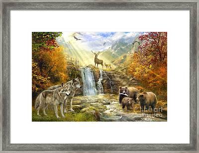 Bear Falls Framed Print by Jan Patrik Krasny