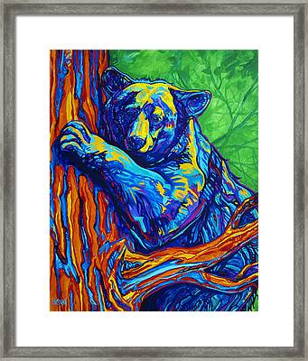 Bear Hug Framed Print by Derrick Higgins