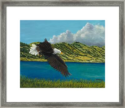 Bear Lake Eagle Framed Print by Michael Shegrud