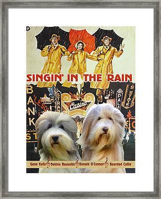 Bearded Collie Art Canvas Print - Singin In The Rain Movie Poster Framed Print by Sandra Sij
