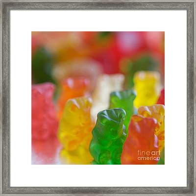 Bears Framed Print by Kim Fearheiley
