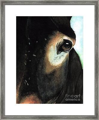 Beast Of Burden Framed Print by Janine Riley