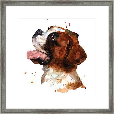 Beautiful Boxer Framed Print by Alison Fennell