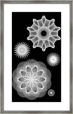 Beautiful Geometry Bw Framed Print by Angelina Vick