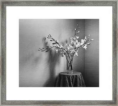 Beautiful Melancholy Framed Print by Amy Weiss