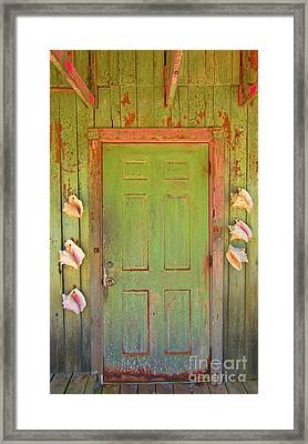 Beautiful Old Door With Seashells Framed Print by John Malone