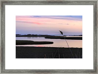 Beautiful Pink And Purple Sunset Over A New England Tidal Salt M Framed Print by Marianne Campolongo