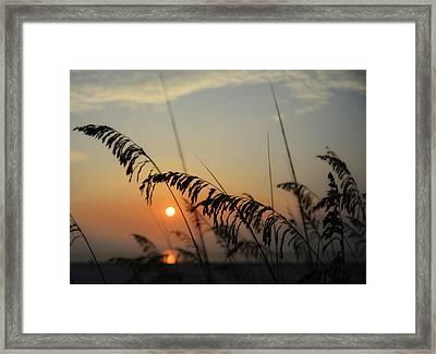 Beautiful Sunrise Framed Print by Tim Palmer