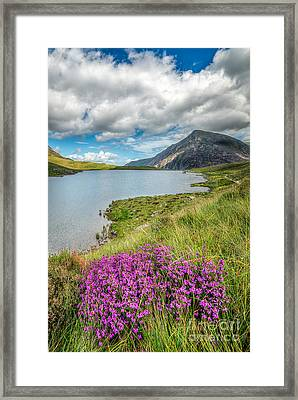 Beautiful Wales Framed Print by Adrian Evans