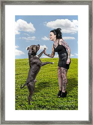 Beautiful Woman And Pit Bull Framed Print by Rob Byron