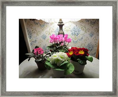 Beauty Comes In Groups Framed Print by Elisabeth Ann