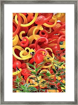 Beauty Framed Print by Dan Sproul