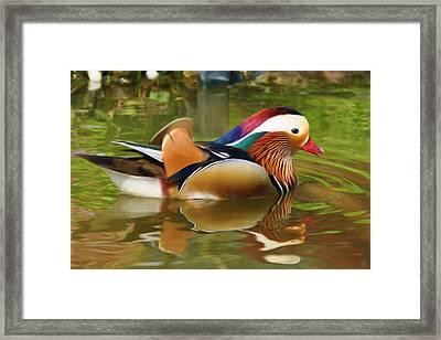 Beauty In The Pond Framed Print by Ayse Deniz