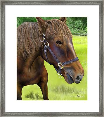 Beauty Framed Print by Maria Schaefers
