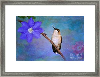 Beauty Surrounds Me Framed Print by Betty LaRue