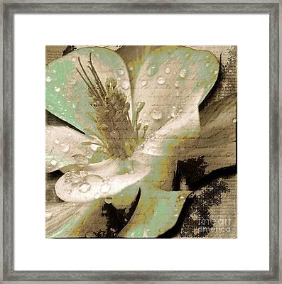 Beauty Vi Framed Print by Yanni Theodorou