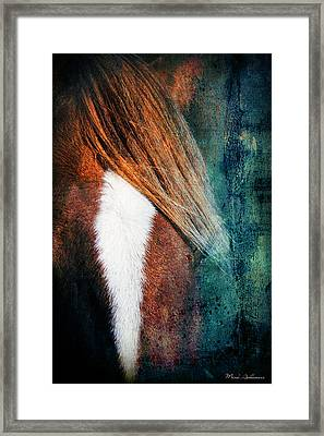 Beauty3 Framed Print by Mark Ashkenazi