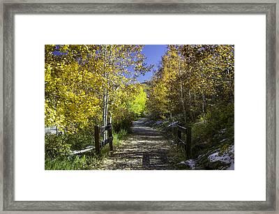 Beaver Creek Bike Path Framed Print by Michael J Bauer