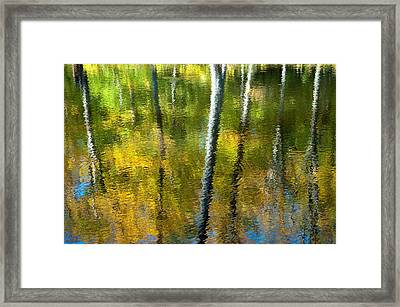 Beaver Pond Reflections - 3 Framed Print by Rob Huntley
