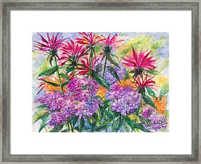 Bee Balm And Phlox Framed Print by Patricia Allingham Carlson