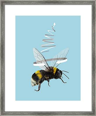 Bee Flight, Artwork Framed Print by Science Photo Library