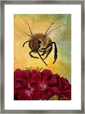 Bee I Framed Print by April Moen
