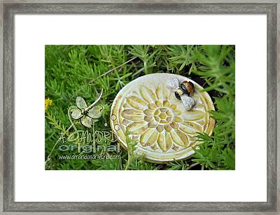 Bee-ware Framed Print by Amanda  Sanford