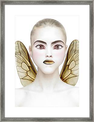 Bee Framed Print by Yosi Cupano