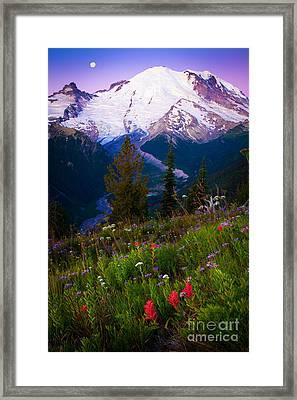 Before Dawn At Mount Rainier Framed Print by Inge Johnsson