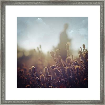 Before Love IIi Framed Print by Taylan Soyturk