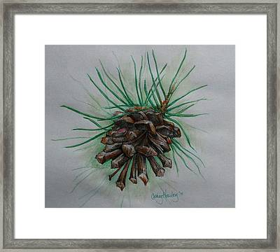 Before The Snow Fell Framed Print by Catherine Howley