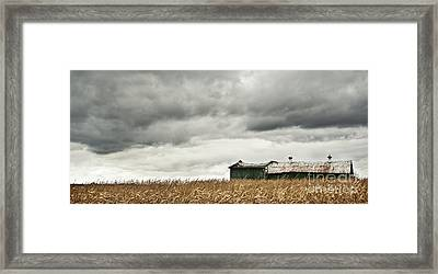 Before The Storm Framed Print by Audrey Wilkie